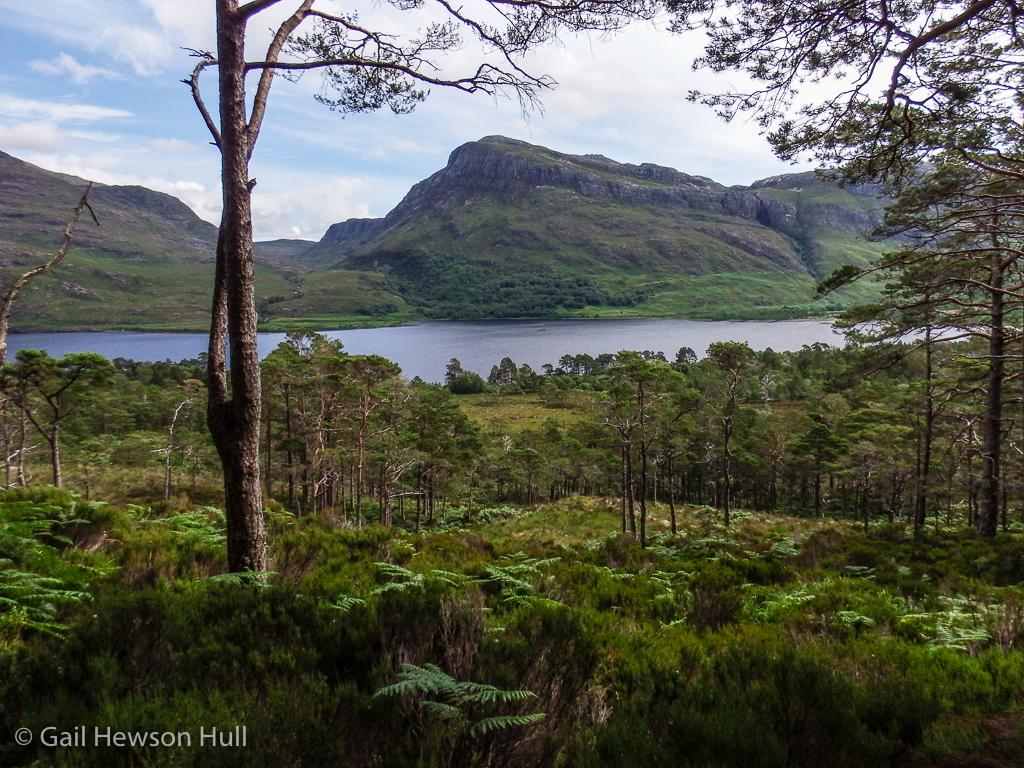 Beinn Eighe National Nature Reserve, Wester Ross