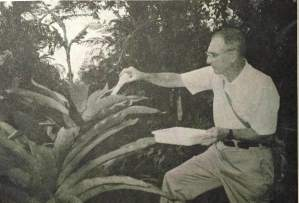 Photo from Dec. 1991 Amigos Newsletter of Robert W. Lichtwardt collecting aquatic insects from bromeliads with a turkey baster.