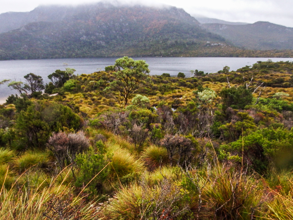 The glacial Dove Lake at Cradle Mountain-Lake St. Clair National Park--the only day it rained during our 30 days of travel.
